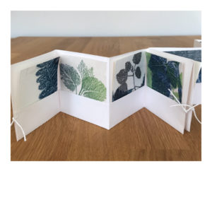 Folded book and Monoprints