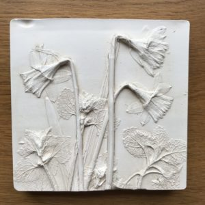 Mini Daffodils plaster cast 2